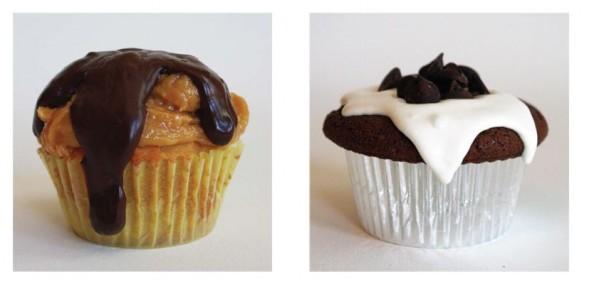 Delicious Cupcakes 10
