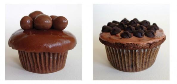 Delicious Cupcakes 6