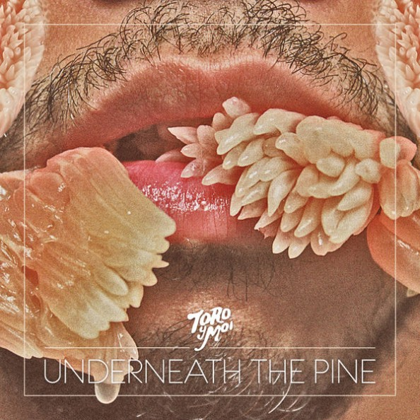 Toro Y Moi Underneath the Pine 2011 Album Cover
