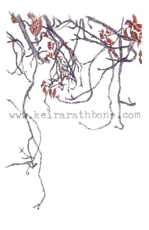 Branches Still Life Typewritten by Keira Rathbone