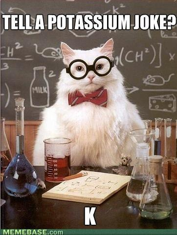 Chemistry Cat Funny Meme