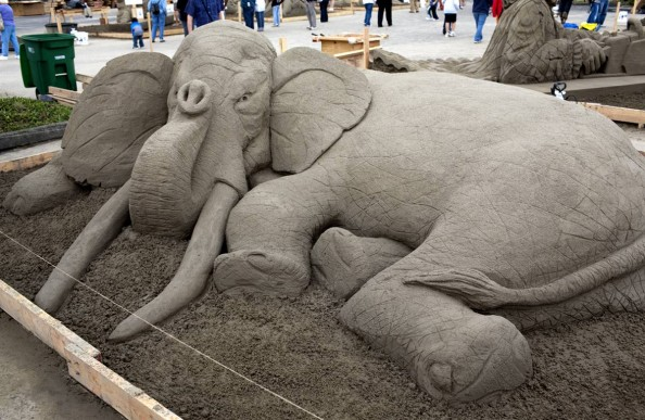 Elephant Soft Pack Sculpted by Paul Hoggard