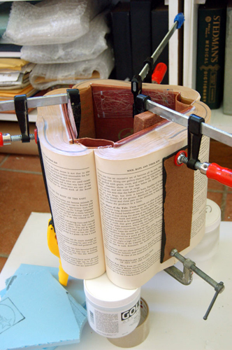 In the Studio of the Book Surgeon