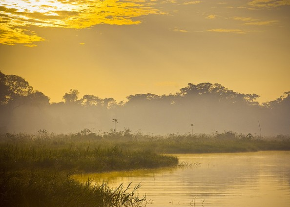 Oxbow Lake Peru Amazon Jungle