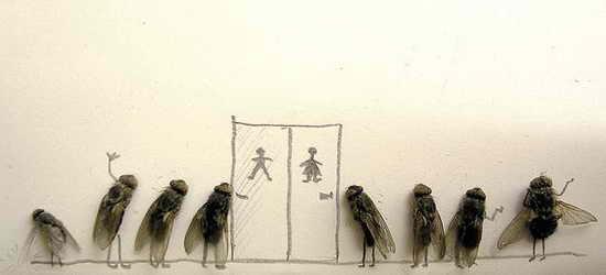 Public Restroom Dead Fly Art by Magnus Muhr