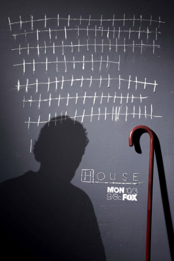 House Season 8 Poster
