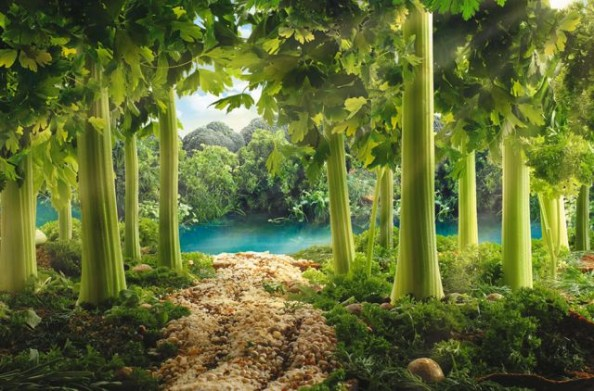 Parsley Forest Food Landscape