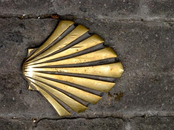 Scalop Symbol Way of St James