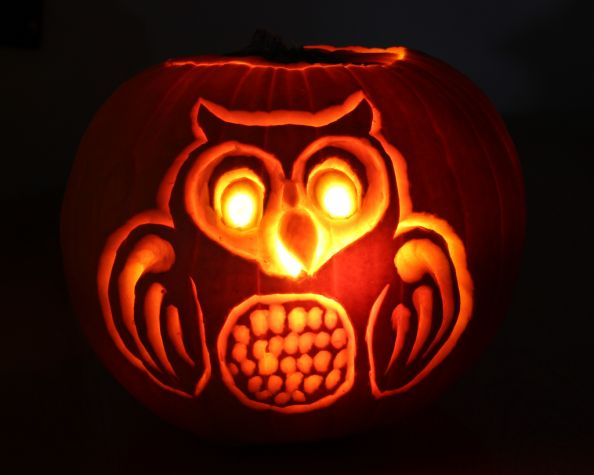 Owl Halloween Pumpkin by vtgard
