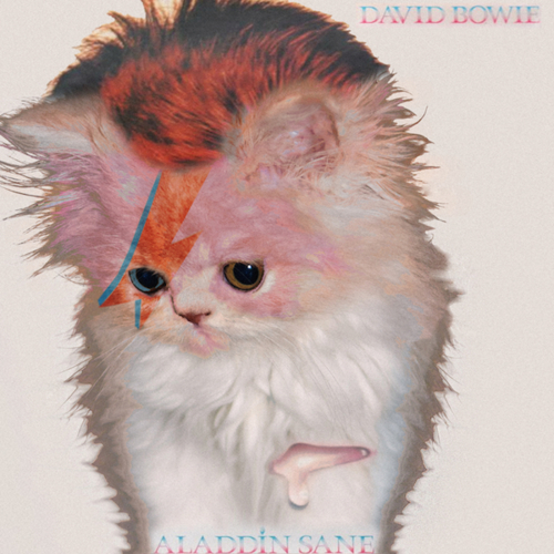 Kitten Covers David Bowie