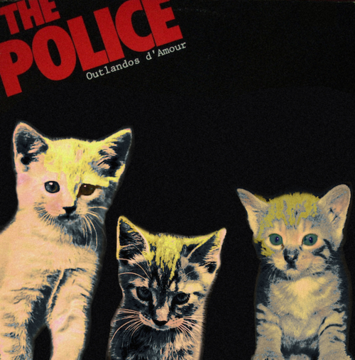 Kitten Covers The Police
