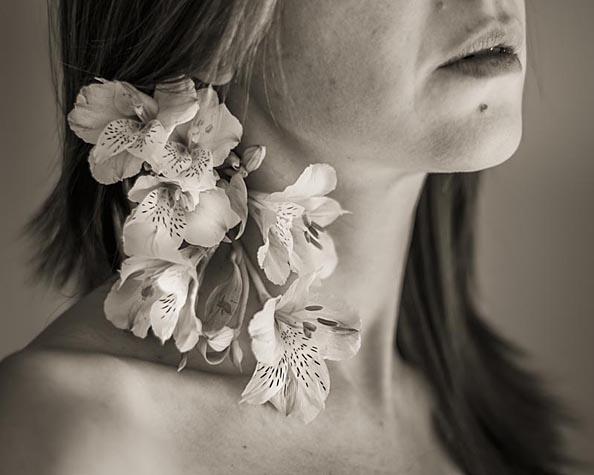Cristiana Gasparotto - Alstroemeria