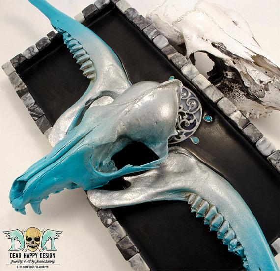 Mounted Coyote Skull