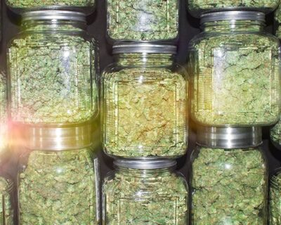 Cannabis Jars