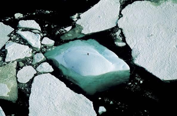 Yann Arthus Bertrand Adelie Land Antarctica