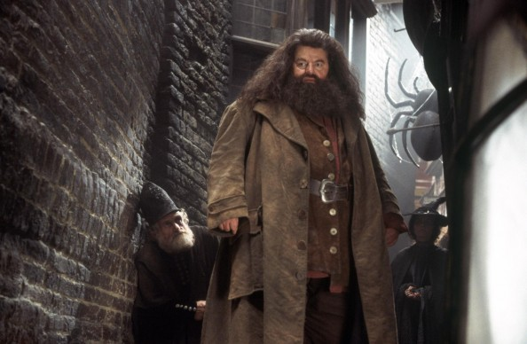 Top 10 Most Memorable Teachers from the Harry Potter series  Rubeus Hagrid