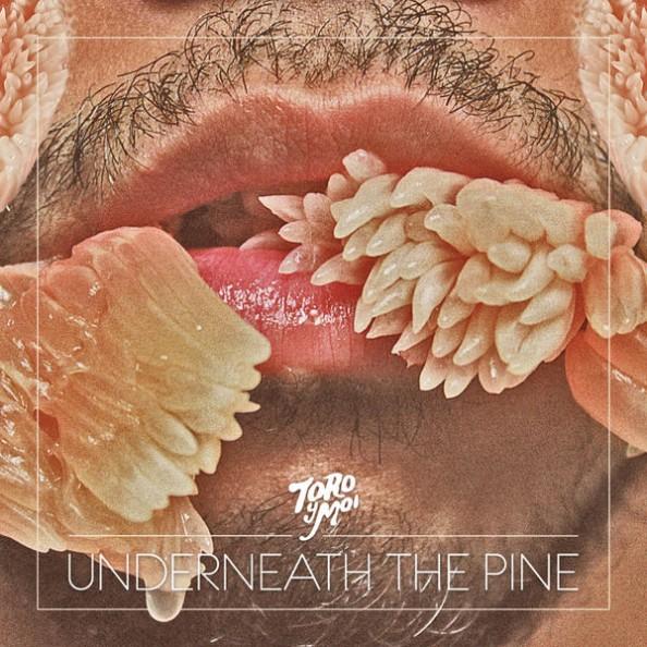 Toro Y Moi Underneath the Pine 2011 Album Cover