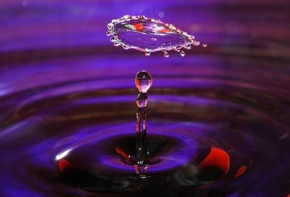 Purple Water Drop by Jonny Jelinek