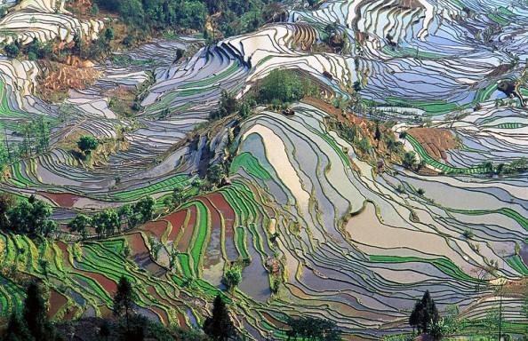 Natural Wonders China Colored Fields of Yunnan