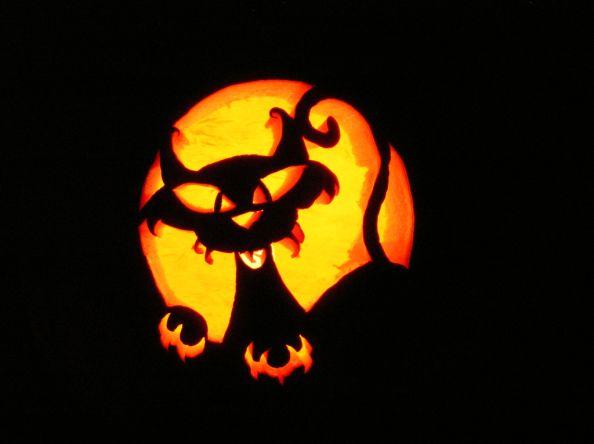Cat Halloween Pumpkin by WxMom