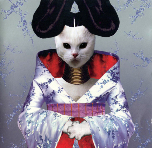 Kitten Covers Bjork Kittengenic