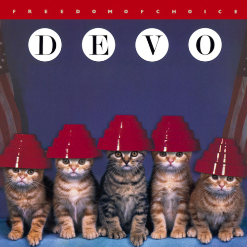 Kitten Covers Devo Kittens