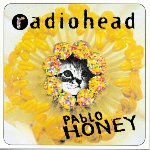 Kitten Covers Pablo Honey