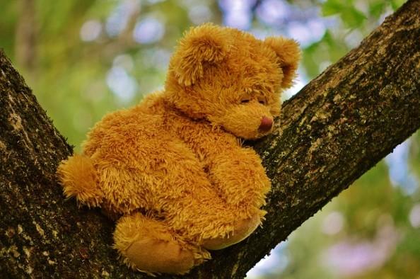Slepping teddy bear